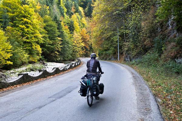 Au pied des Carpates, l'automne transforme la forêt en fresque multicolore