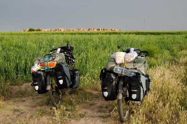 Vestiges des anciens temps, au milieu du désert vert… et cultivé