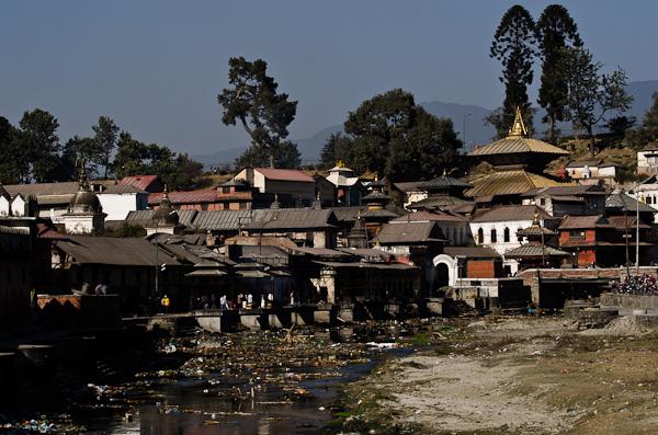Avec son toit doré, le temple de Pashupati domine le site