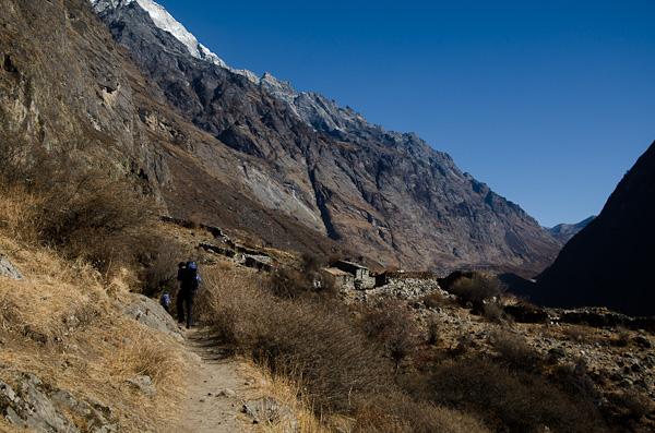Marche d'approche dans la vallée du Langtang