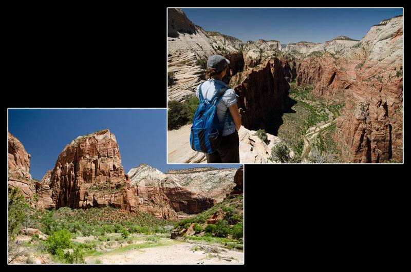 Les falaises vertigineuses du parc national de Zion: difficile à croire qu'une aussi petite rivière ait creusé tout ça!