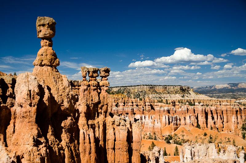 Tels des êtres pétrifiés, les hoodoos habitent l'amphithéâtre du Bryce Canyon…