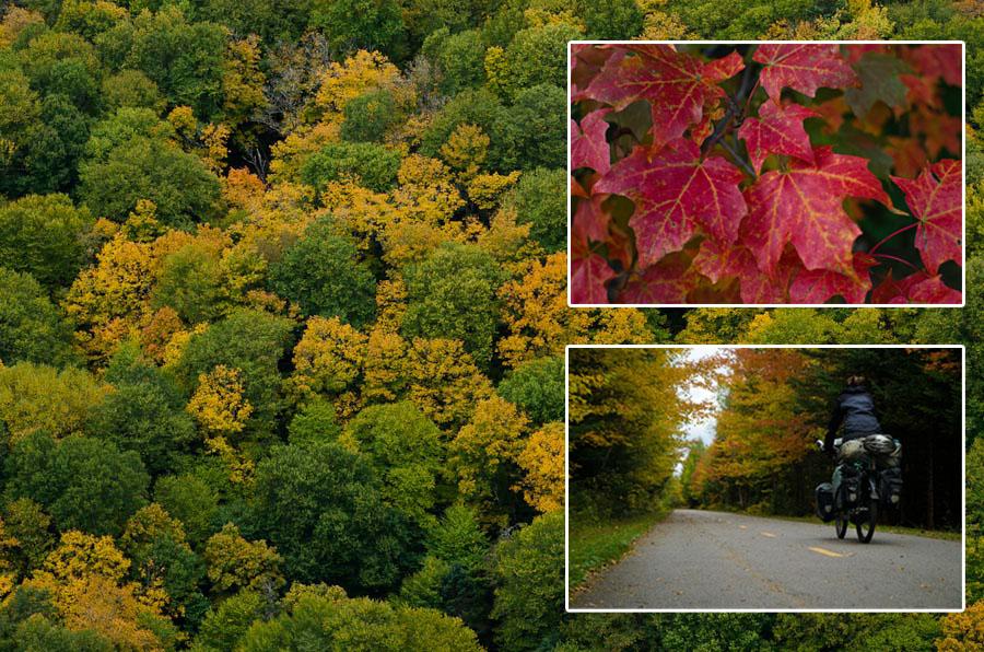 Un festival de couleurs est annoncé! Le spectacle préparé par l'automne est, à lui seul, une raison suffisante de venir au Québec