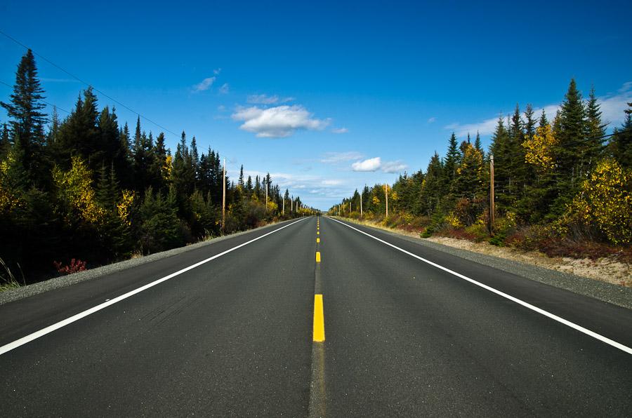 Ligne droite en pleine nature. Les rares moments sans trafic nous laissent seuls, au milieu de rien. Fantastique!