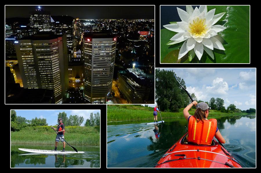 Quinze kilomètres séparent le centre de Montréal du parc national des Iles-de-Boucherville. Au Québec, la nature n'est jamais bien loin